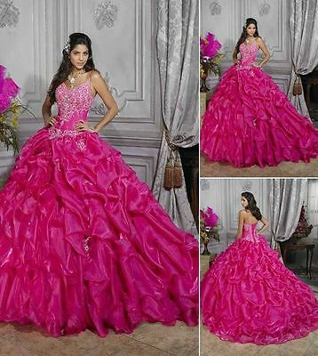 Embroidery A-Line Organza Quinceanera Evening Bridal BallGown Pageant Prom Dress