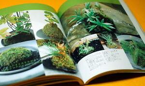 Japanese-MINI-SMALL-BONSAI-amp-KOKE-DAMA-Interior-BOOK-from-Japan-rare-0014