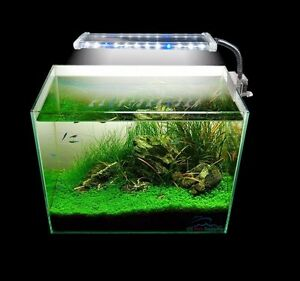 12/18/24LED Clip Light HIGH LUMEN Aquarium Plant White&Blue Marine FOWLR