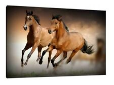 Horses - 30x20 Inch Canvas - Equestrian Framed Picture Print Horse