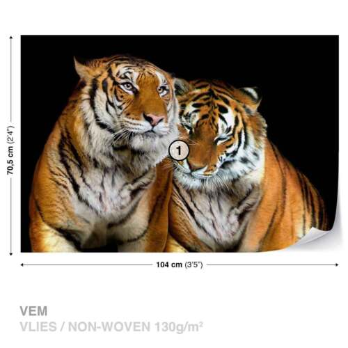 WALL MURAL PHOTO WALLPAPER XXL Tigers 130WS