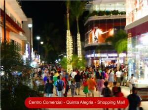 Inversion comercial, locales venta en la famosa Quinta Avenida de Playa del Carmen.