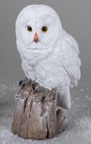 D/'Art Formano Dekofigur wintereule UHU Kautz winterdeko Blanc 23 cm