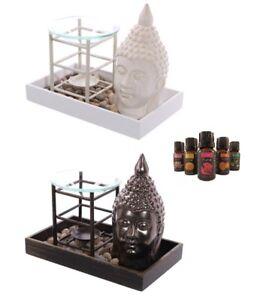 Das Bild Wird Geladen Buddha Duftlampe 1 Duftoel Figur Statue Buddafigur Feng