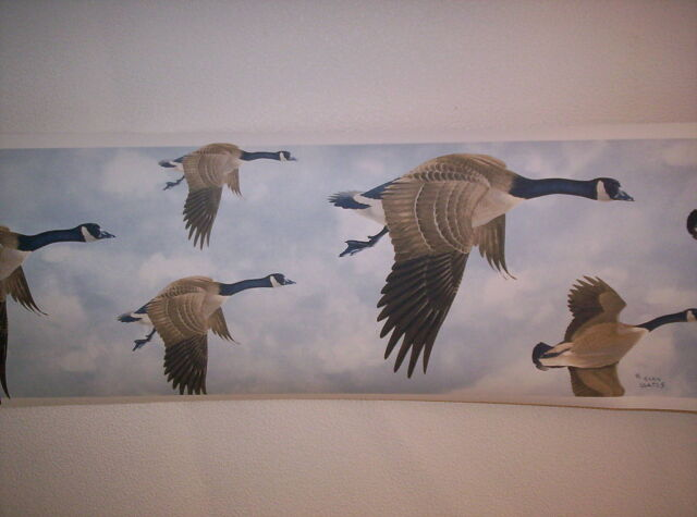 Canada Geese Wallpaper Border 400 ONLY $8 Norwall Borders