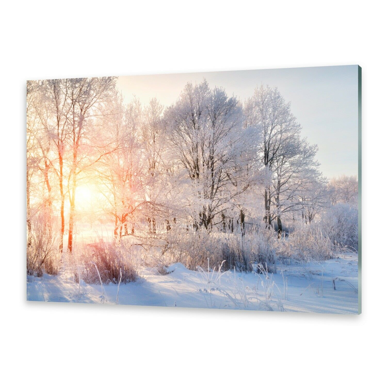 Acrylglasbilder Wandbild aus Plexiglas® Bild Bäume Winter