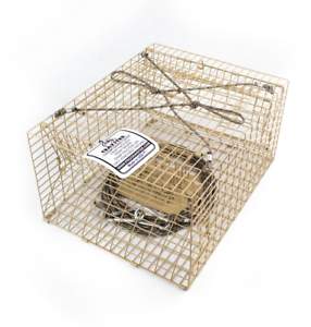 Top of the  Line C ster Creek Trap Crawfish Trap C fish  buy discounts