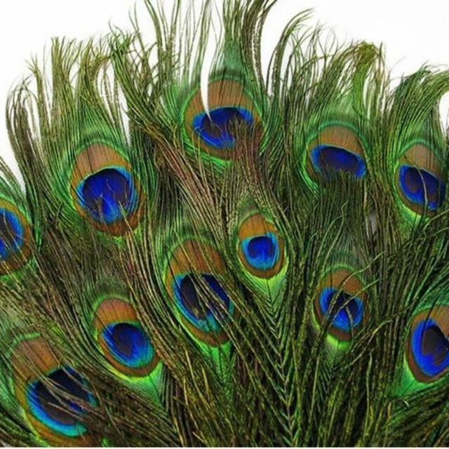 100pcs New Real Natural Peacock Tail Eyes Feathers 8-12 Inches/about 23-30cm