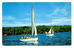 Details about Sailboats Calef's Famous Country Store Postcard East  Barrington New Hampshire