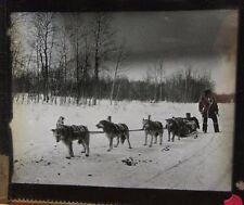 c1900 - HUSKY DOG SLED TEAM on SNOW -  Glass Lantern Photo Slide
