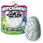 Spin Master Hatchimals Draggles - Blue/Green