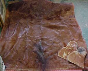 RARE-Horse-Hide-fur-blanket-wool-1800-039-s-Equestrian-WOW
