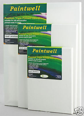 "Pack of 10 pieces of  Paintwell blank canvas 14x18"" (35x45cm), 18mm Stretcher"