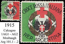 WWI Italian Red Cross in Argentina - large size rarity