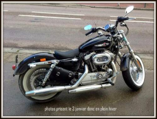 Sacoche latérale en Cuir Coté DROIT Sportster iron forty nighster V-rod Night