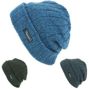 d91a26aae3a92 Beanie Hat Cap Warm Winter GREEN GREY BLUE Thinsulate 3M Men Ladies ...