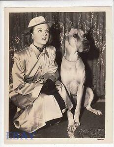 State W On Ebay Lansbury Set Vintage Candid Union Photo Angela Of dog The