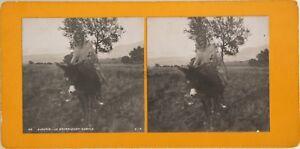 Algeria Cabila Asino Foto Orientalist Stereo Vintage Analogica c1900