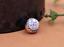 10X-10mm-Antique-Flower-Turquoise-Conchos-Leather-Crafts-Bag-Wallet-Decoration miniature 14