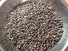 10 Grams /100+ Hawaiian Baby Woodrose Seeds (Argyreia Nervosa)  BULK