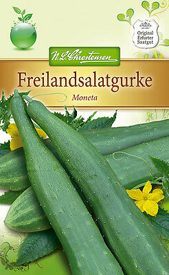 Salatgurke 'Moneta' - Cucumis sativus, Gurke fürs Freiland, ca. 30 Samen 4268