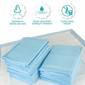 Extra Large Puppy Toilet Training Pads Absorbent and Scented 100 5