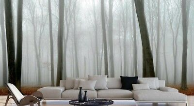 Beech Tree Forest on a Foggy Day 16.5' x 8' (5,03m x 2,44m)-Wall Mural