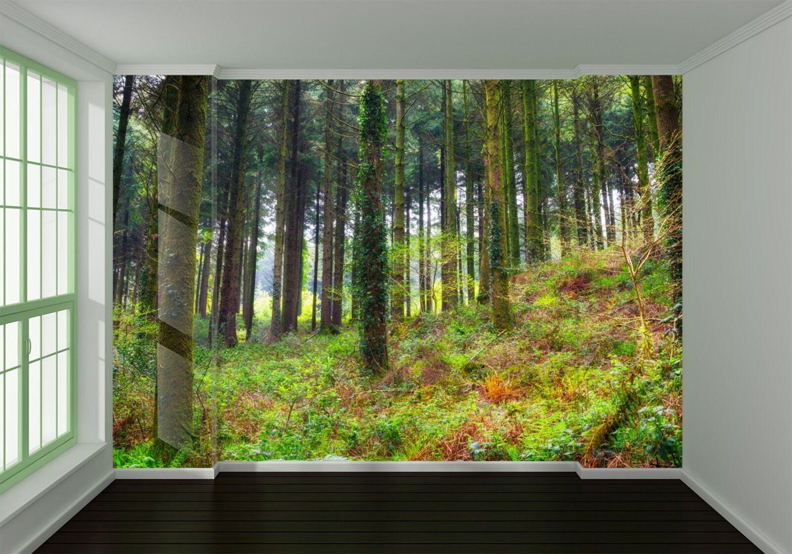 3D Wiese Wälder Landschaft 8053 Tapete Wandgemälde Tapeten Bild Familie DE Lemon