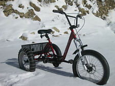 MOUNTAIN TRIKE 3 SPEED FAT TIRE BEACH CRUISER bike tricycle wheelchair walker