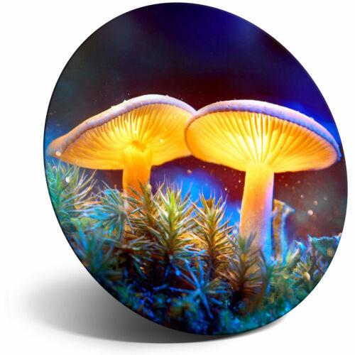 Super Aimant de réfrigérateur-Magic Glowing champignons Fantasy Cool Cadeau #14811