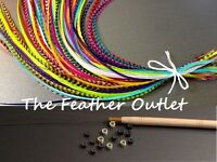 Feather Hair Extensions Kit, Lot Of 10, Beads Grizzly Real Natural Rainbow Kit