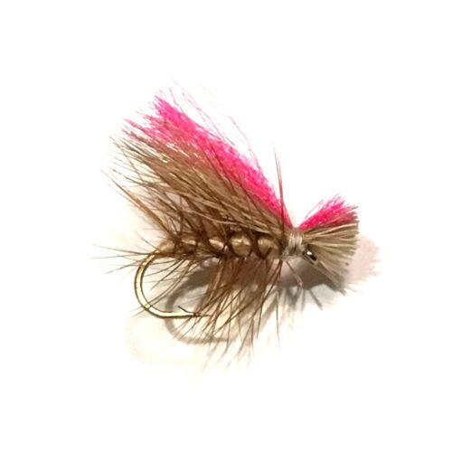 6 x Tan Hi-Vis Caddis Dry Fly Fishing Flies For Trout