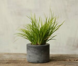 Little-Concrete-Planter-Flower-Pot-Handmade-Home-amp-Garden-Decor-Natural-Gray
