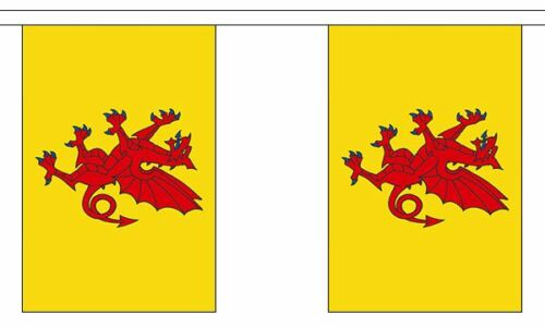 Somerset New British County 3 metre long 10 flag bunting