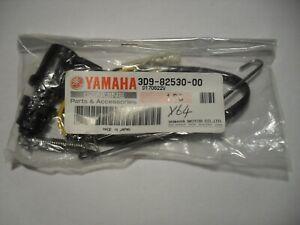 Front Brake Light Switch Honda NES125 Y @125 00-02