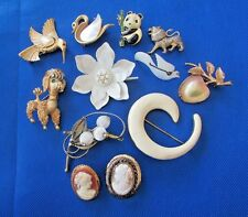 Vintage Brooches~Pins Pet Parade Poodle~Cameos~Flower~Forbidden Fruit~Lot Of 12