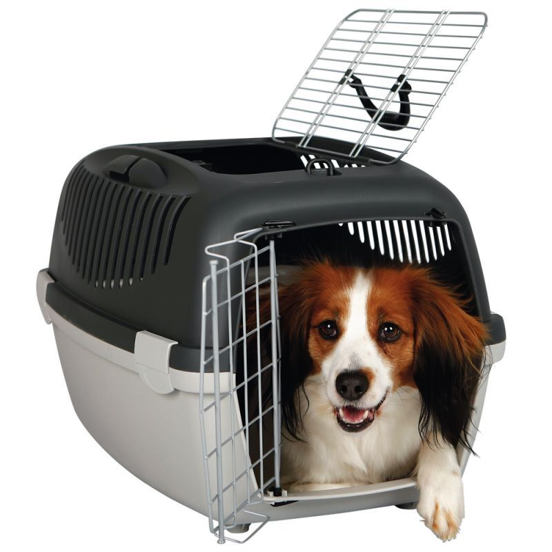 Plastic Pet Crates Dog Travel Travel Travel Carrier Small Puppy Cats Carry Handle & Door Cage 079c15