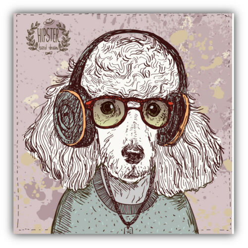 /'/'SIZES/'/' Poodle Dog Hipster Head Sketch Car Bumper Sticker Decal