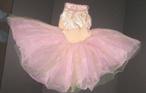 NEW BALLET COSTUME Rose Embroidered bodice Tulle skirting Girls szs w//hdpc sash