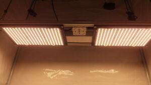 Details about Quantum Board cob led grow light, lm561c s6, 250w (draw), v2  lm301b 800mm