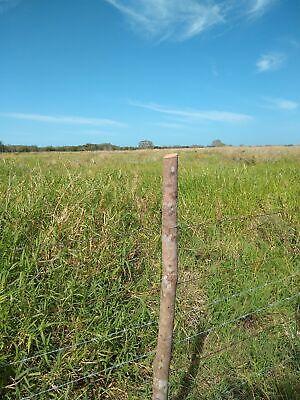 Vendo 63 Hectareas es Propiedad en Paraiso Champoton son planas tierra negra a 8 kms de ciudad Urge
