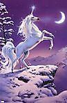 Enchanting Unicorn