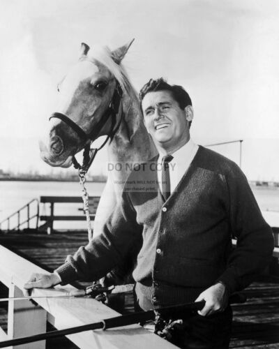 """ZY-111 ALAN YOUNG AND /""""MISTER ED/"""" CBS TV SHOW 8X10 PUBLICITY PHOTO"""