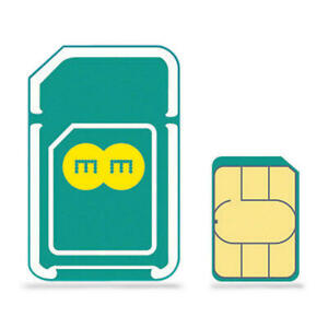 EE Pay As You Go 4G SIM Card Pre-Loaded with 500 MB per Month - 12 Months