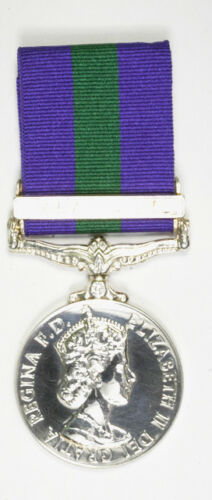 Small Queens Own Cameron Highlanders Regimental Medal Display Case