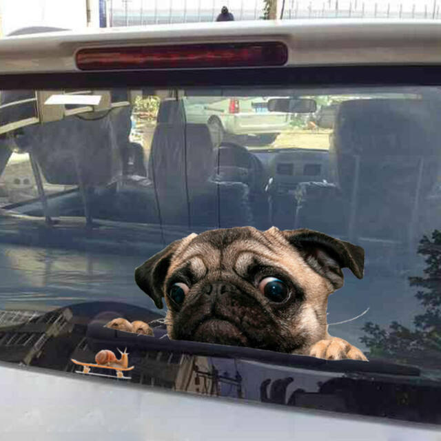 Cute 3D Car Window Decal Pug Dog Watch Snail Sticker Pet Puppy Laptop Stickers