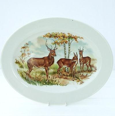 Vintage Retro Sheriden Bone China Stag Deer Oval Plate Turkey Platter
