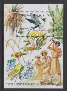 Antigua-1985-Ann-de-Fille-Guides-Barn-Swallow-Oiseaux-Feuille-MNH-Sg