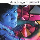 Jazzwerk by David Diggs (CD, Dec-2003, Indiggnant Music)