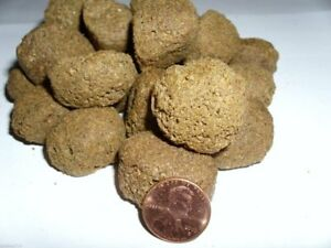 2-lbs-50-3-4-1-inch-large-floating-pellets-fish-food-for-bass-and-large-fish